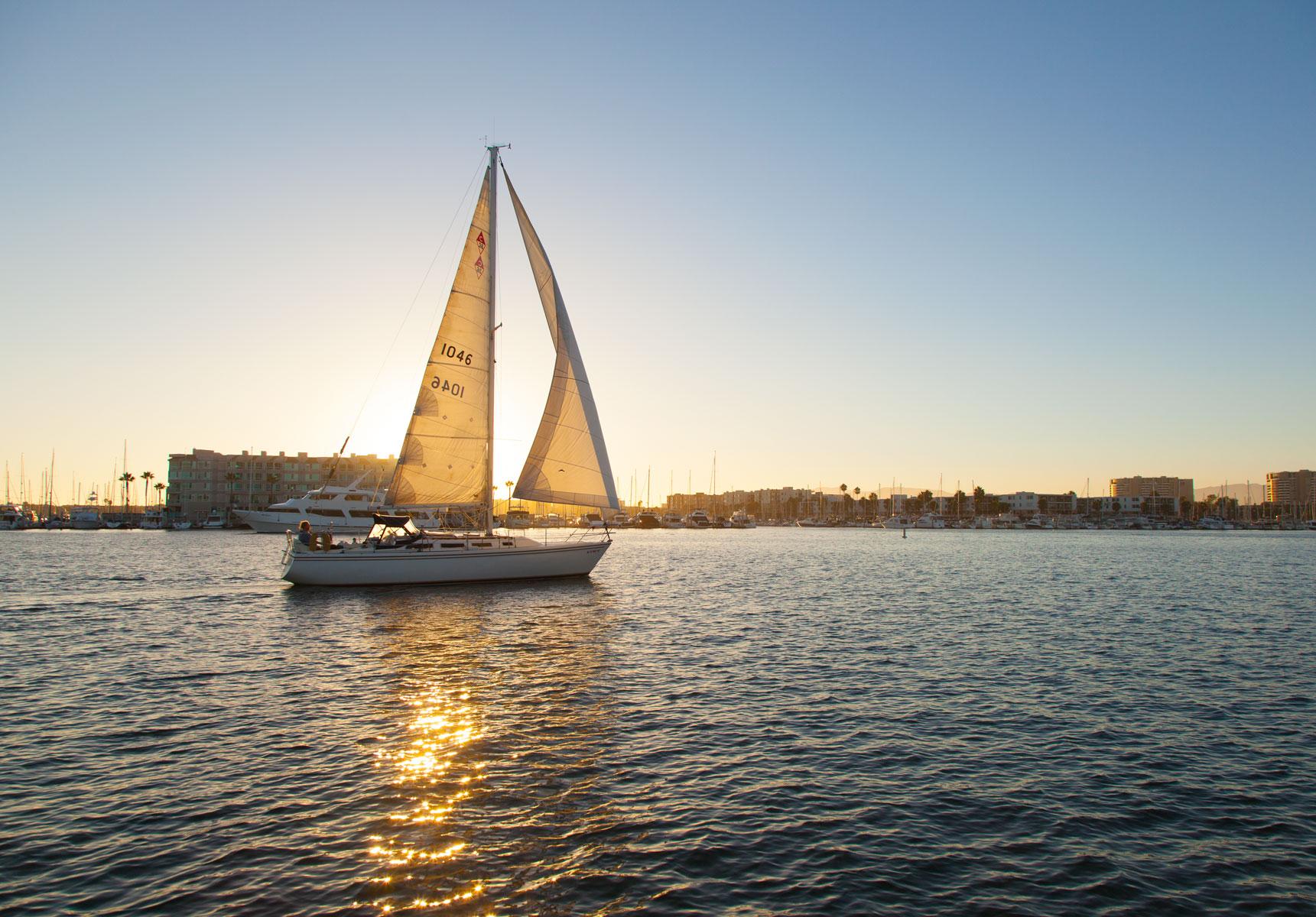 sunset_sail_in_the_marina_harbor_l.jpg