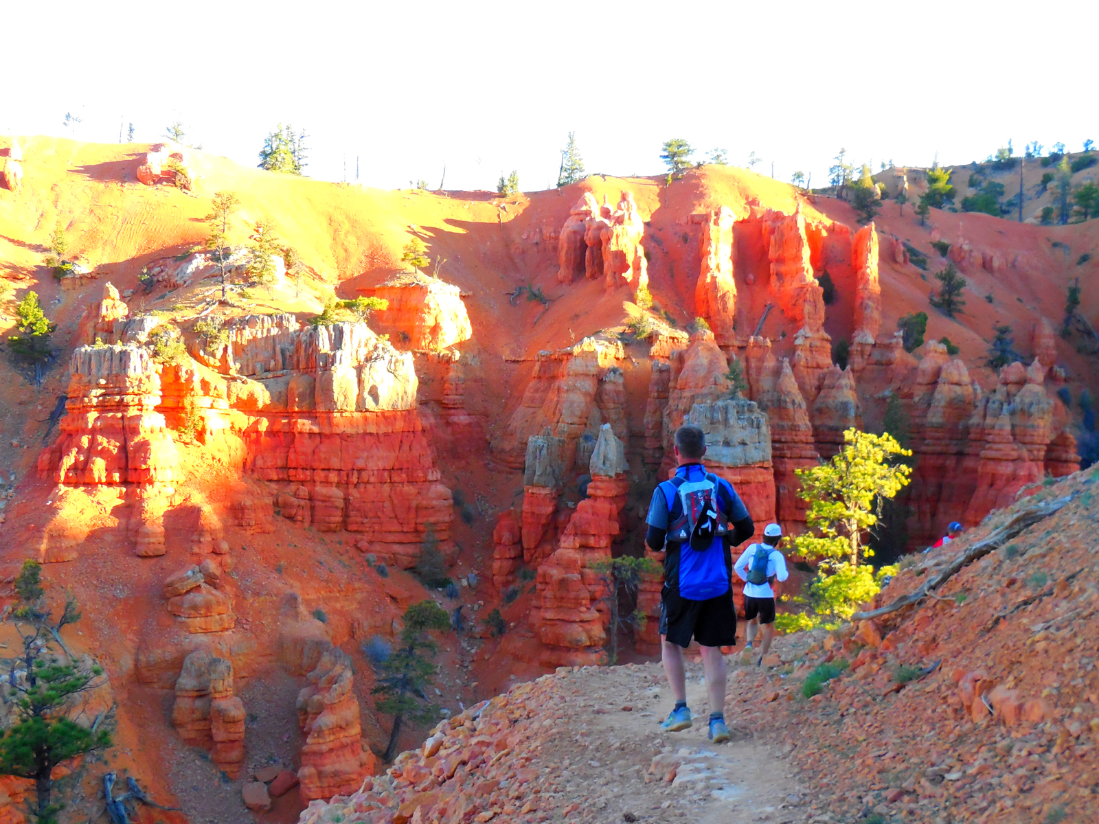 A member of the Varner family racing to the bottom of Bryce Canyon. Their attorney, Mortey Steinway, can be seen in the distance on his cell.