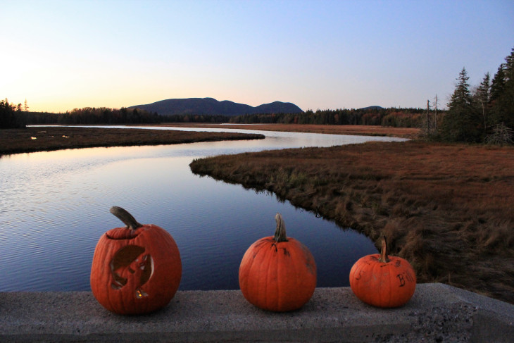 BAR HARBOR CAN BE A SCARY PLACE THIS TIME OF YEAR. RANDOM PUMPKIN PLACEMENTS AND ALL THAT WACKINESS.