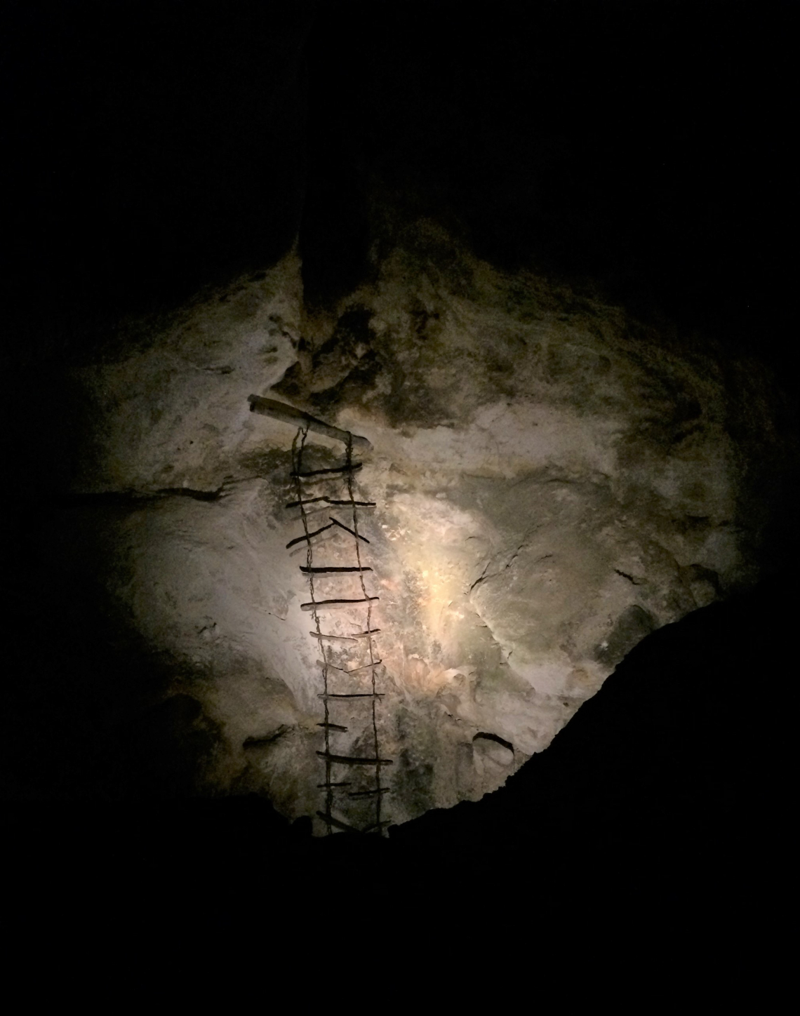 Ladder left in place from an early cave explorer. Passed multiple inspections.