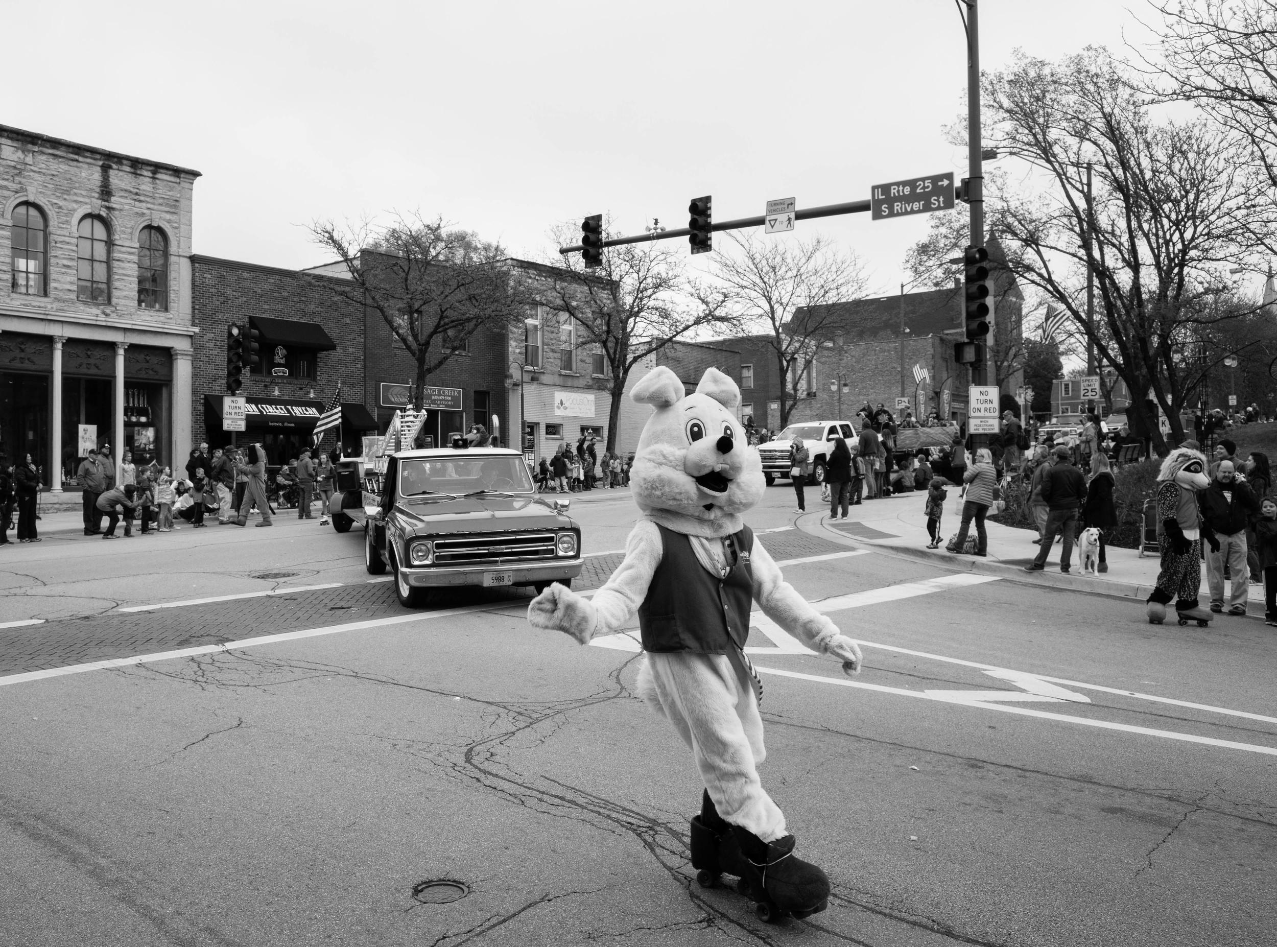 rabbitroller.jpg