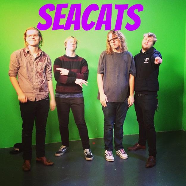 23211-banner-seacats-band.jpg