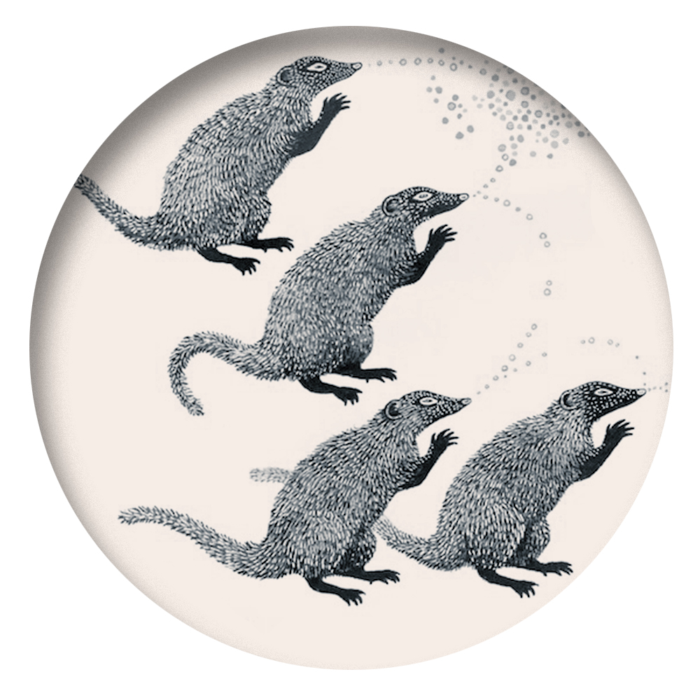 THE MONGOOSES