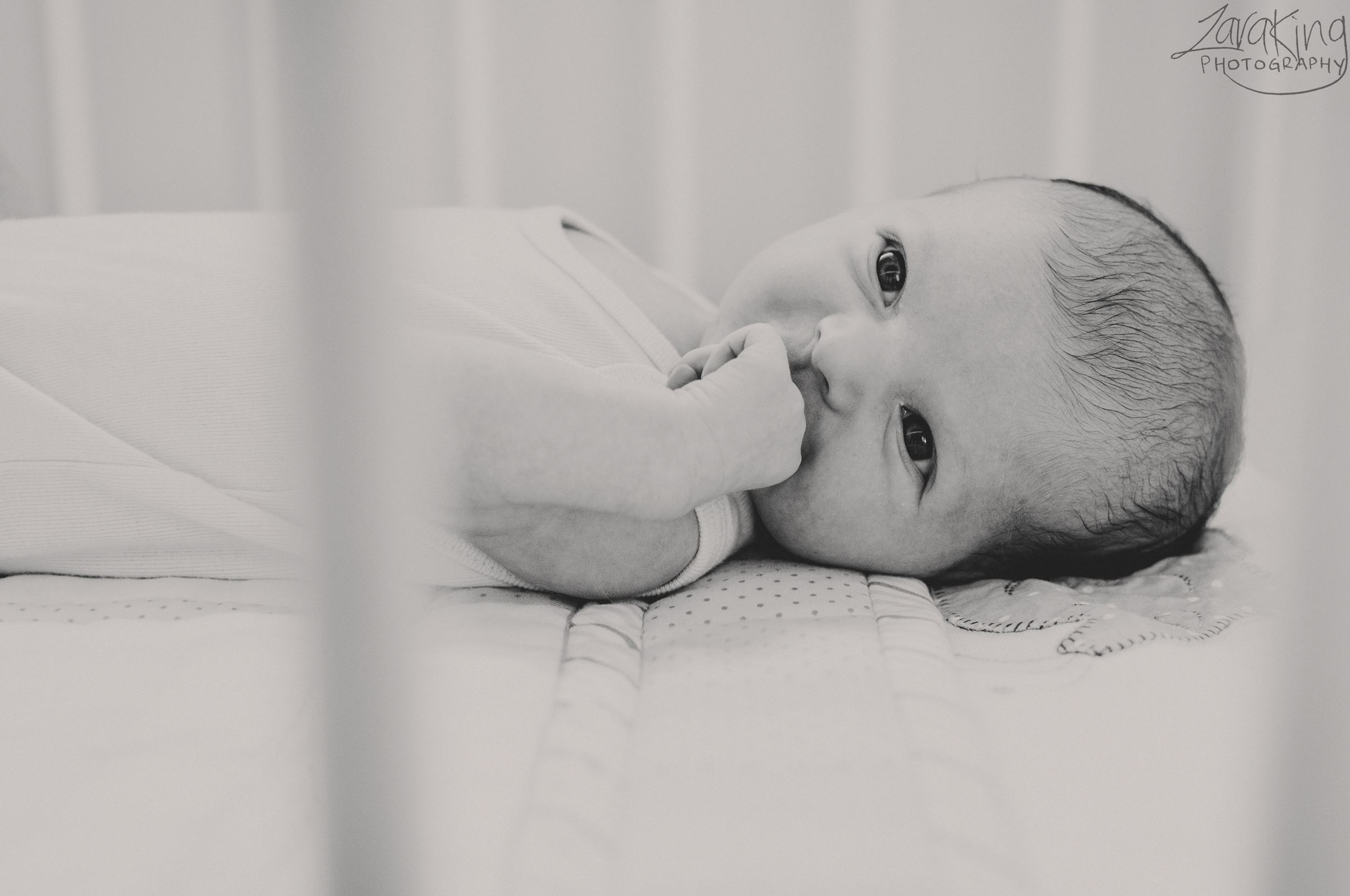 Zara King Photography | Blog | Newborn and family portrait session with Jayden, Rachael and Lily in Wellington, NZ
