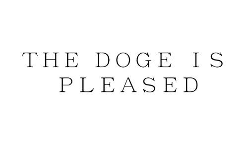 dogeispleased.jpg