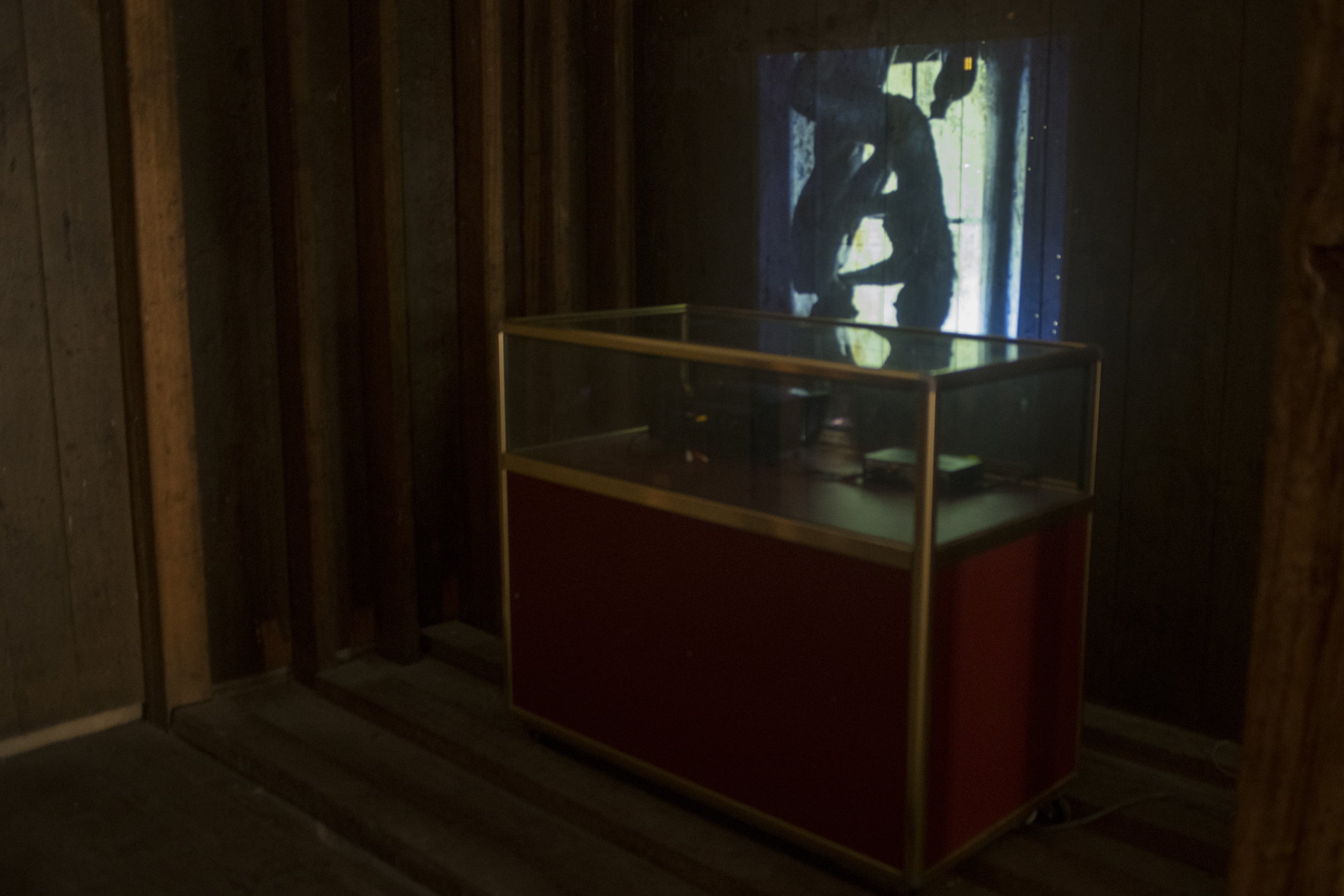 Carolee Schneemann, Fuses, ,16mm film transfer. 18 min.CourtesyElectronic Arts Intermix (EAI), New York. image: Liam James