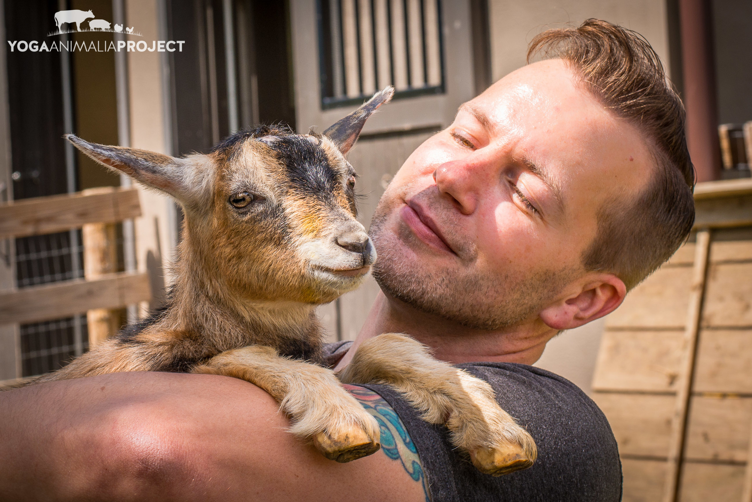 Avery with his namesake, Farm Sanctuary, Watkins Glen, New York