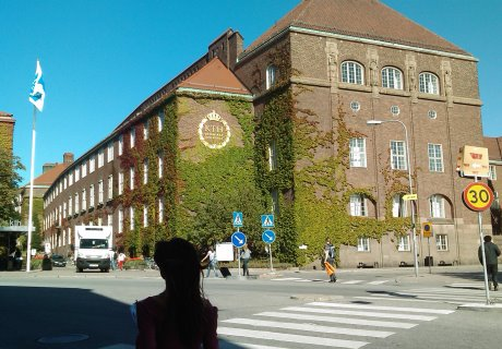 KTH, Royal Institute of Technology - I started my journey in Sweden educating myself thinking about becoming a chemist at first, but I got hooked on computers and electronics. I switched and got a MSEE degree from KTH Royal Institute of Technology in Stockholm specializing in digital signal processing and radio antennas. Later added, MBA from SMU, TX.