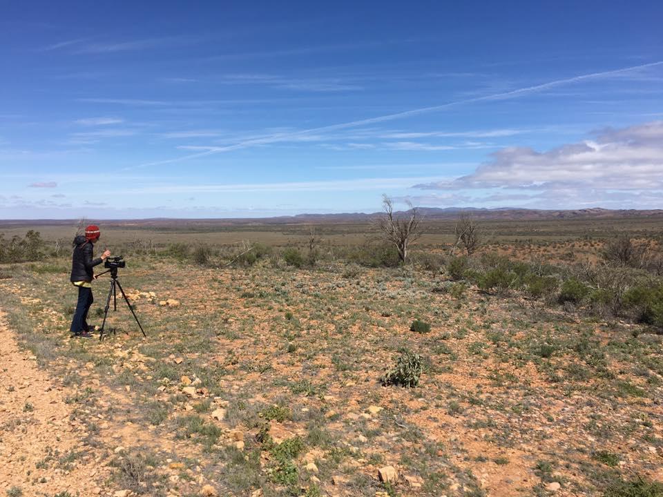Nepabunna Flat Country.jpg
