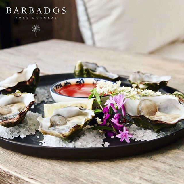 $1 OYSTERS... at today's SEAFOOD SUN☀️DAY. See you soon 🤗🌴😎 ————————————————————— #barbadosportdouglas #seafoodsunday #oysters #martiniqueislandstyle #portdouglas #cocktailbar #marina #paradise #luxury #style #interiordesign #bar #restaurant #alcohol #food #wine #cocktails #champagne #travel #instatravel #barbadosstyle #crystalbrooksuperyachtmarina #greatbarrierreef #daintreenationalpark #discoverfnq #thisisqueensland #queensland #exploreaustralia #australia #home