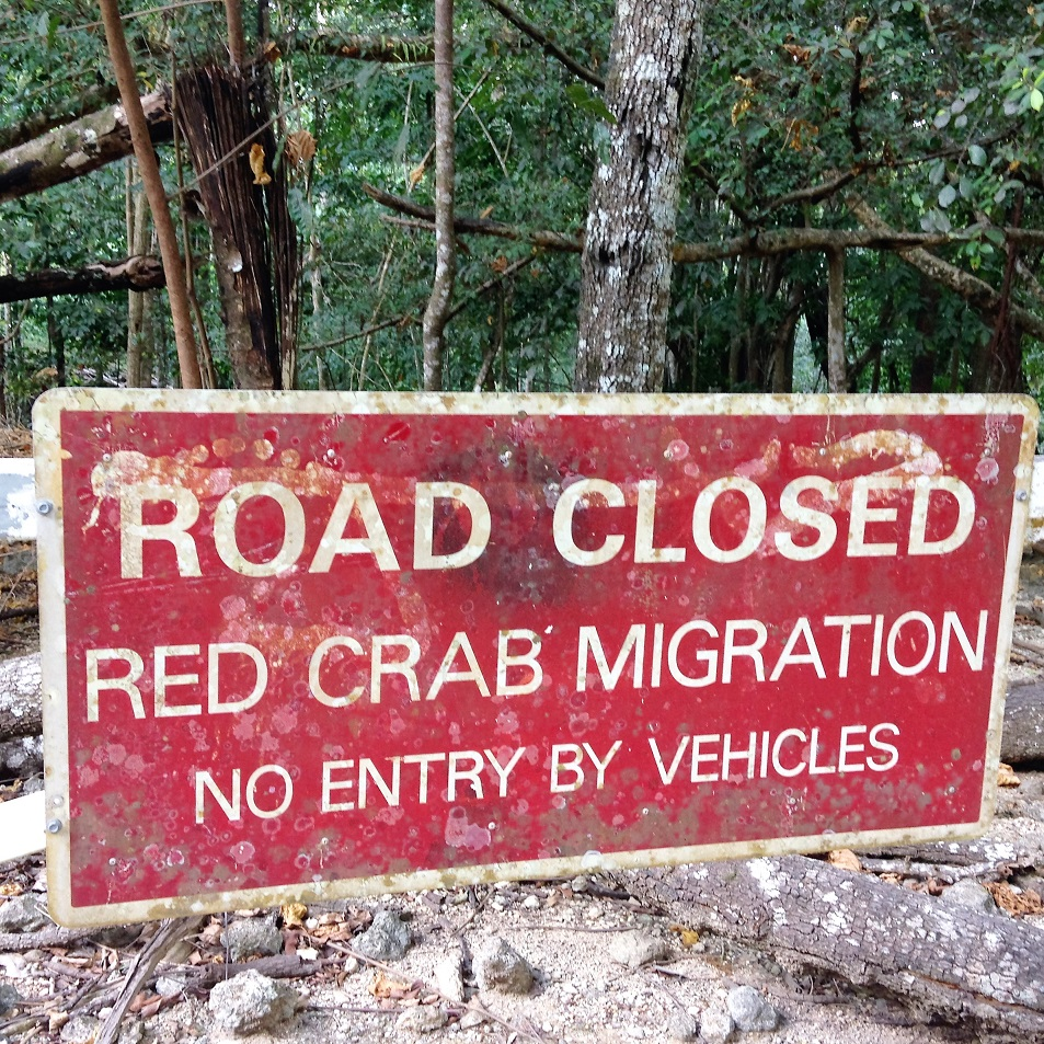 crab sign.JPG