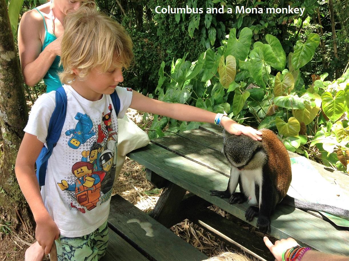 Columbus and Mona monkey.JPG
