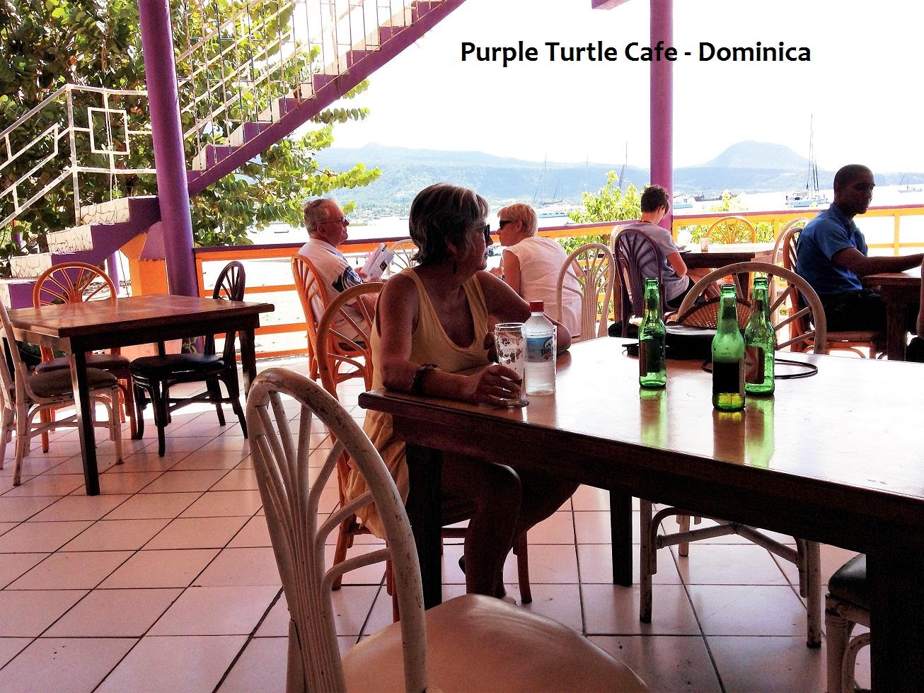 Purple Turtle.JPG