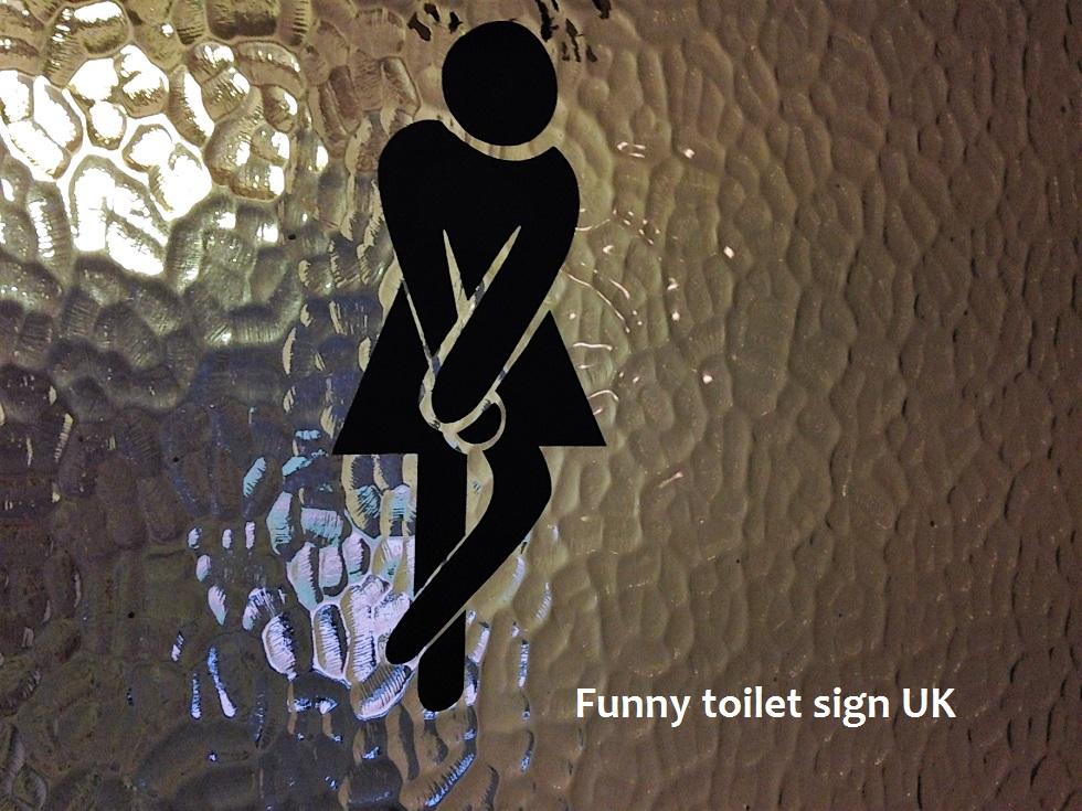 ladies toilet.JPG