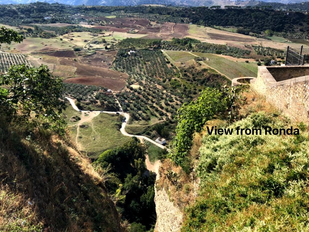 view from Ronda.jpg