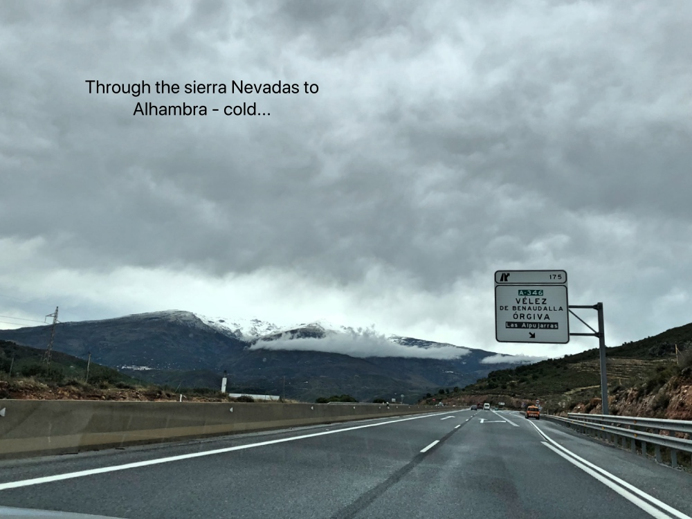 Al S Nevadas.jpg