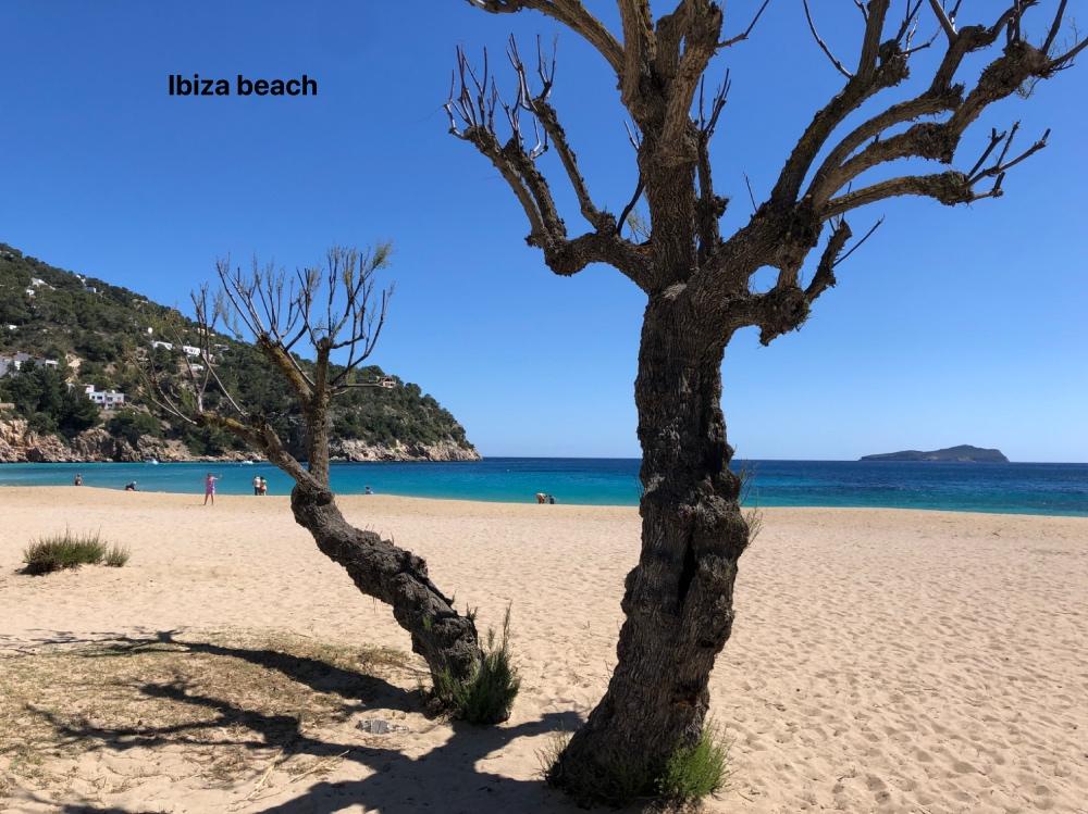 Ibiza beach_Fotor.jpg