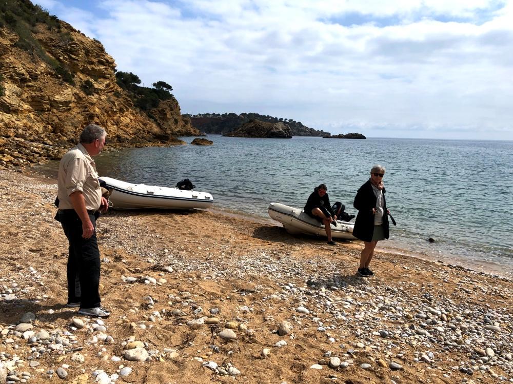 beach landing_Fotor.jpg