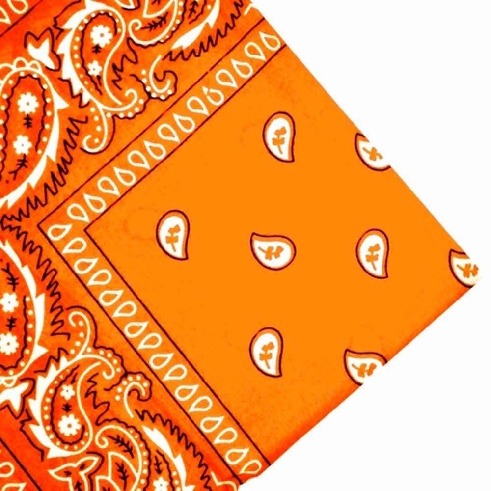 orange-paisley-bandana.jpg