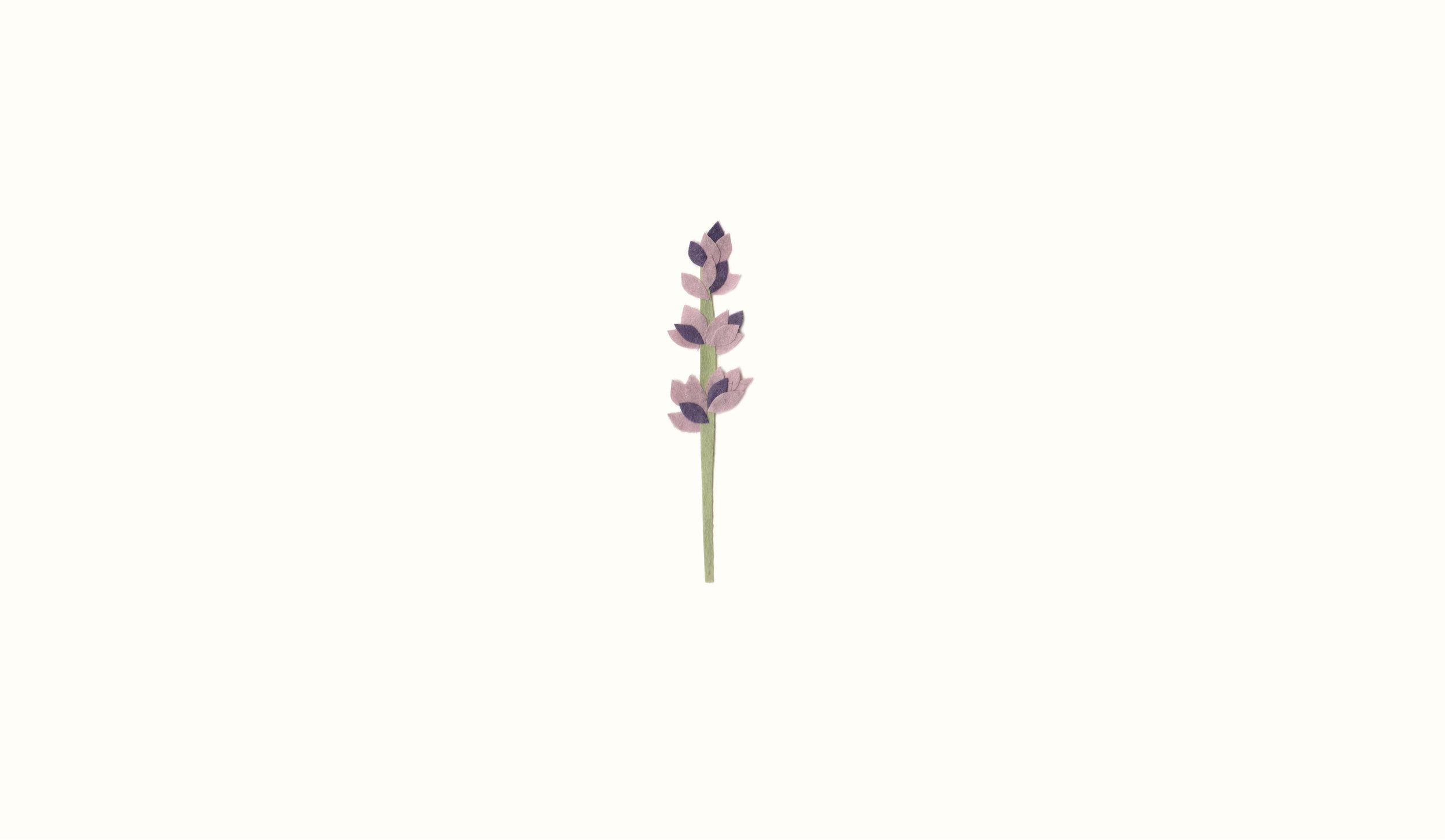 hiyokoimai_lavender_themontessoritoddler2.jpg