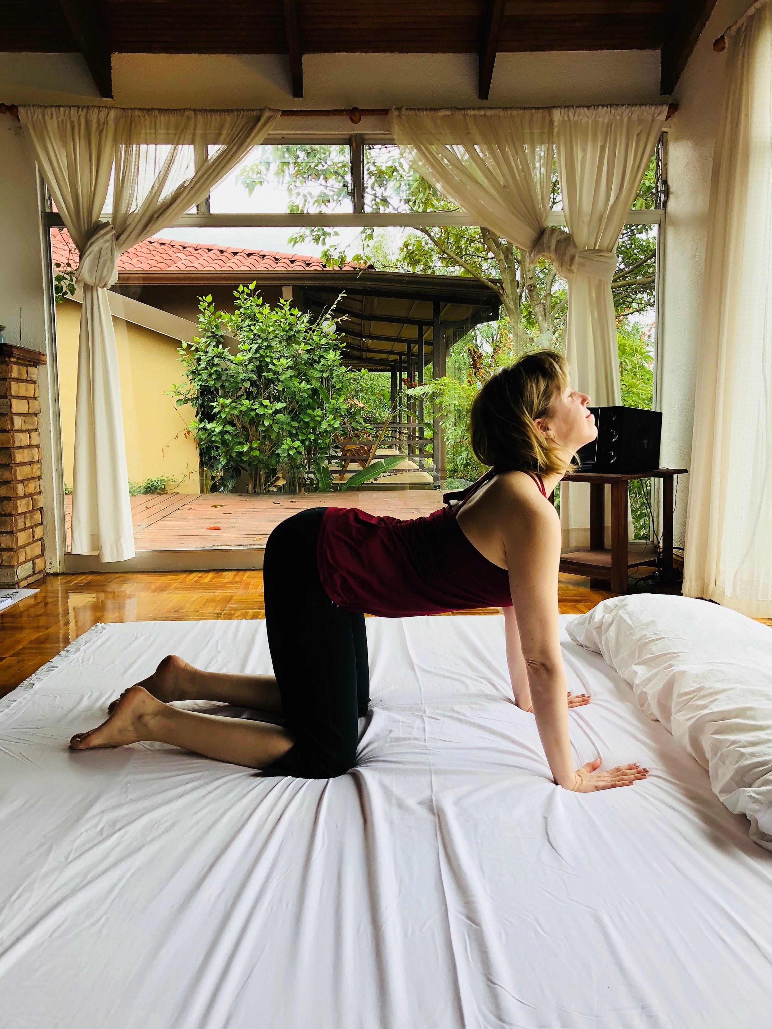 yoga back pain 1.jpg