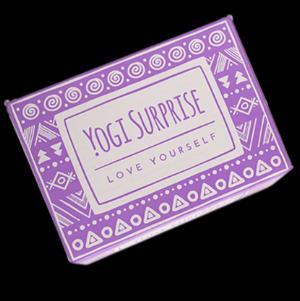 Yogi Surprise Box Lara Alexiou.png