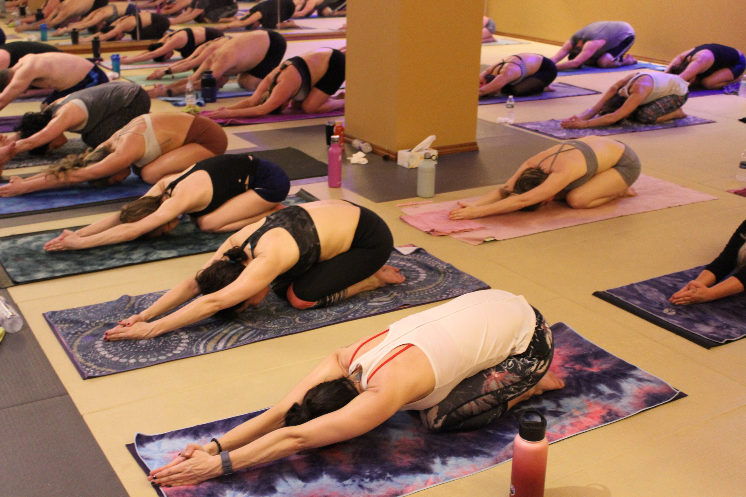 Beginner Yoga Steamtown Yoga.JPG