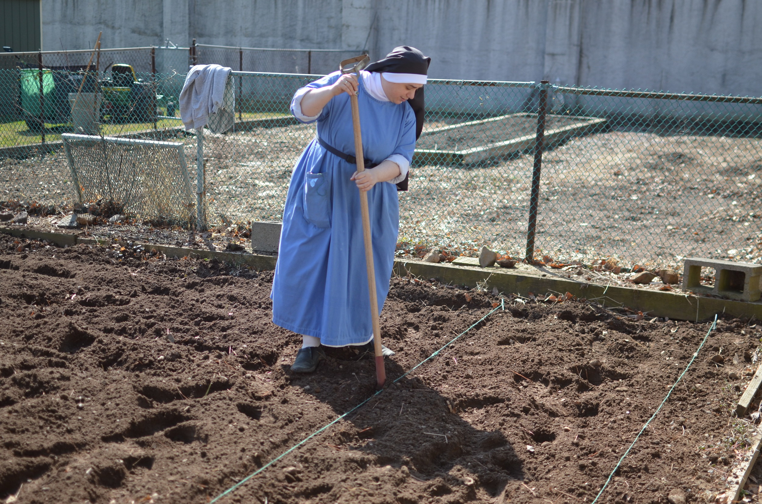 Usually Sr. Mary Catharine is BEHIND the camera but we caught her planting lettuce!