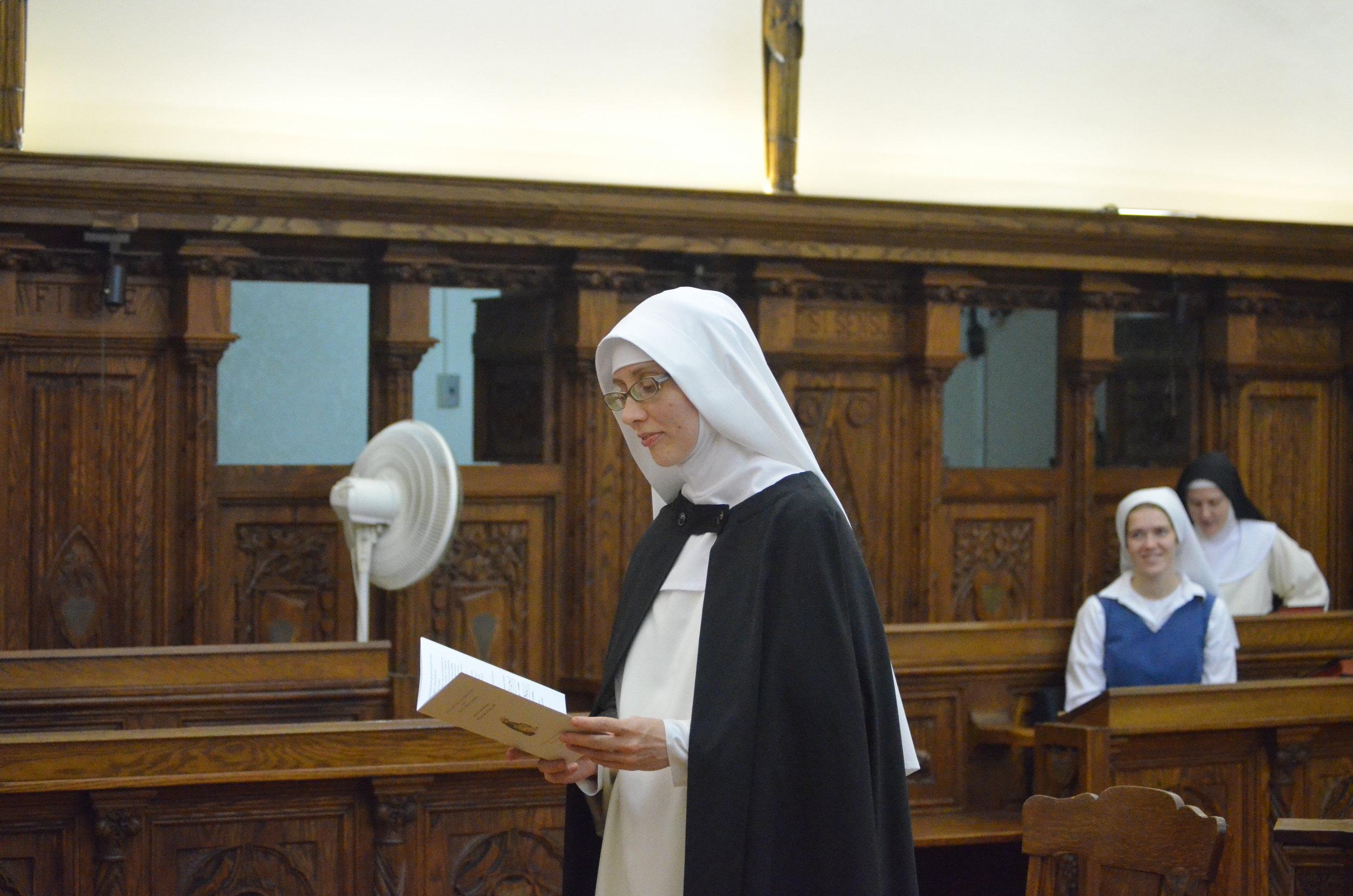 Examination of the novice