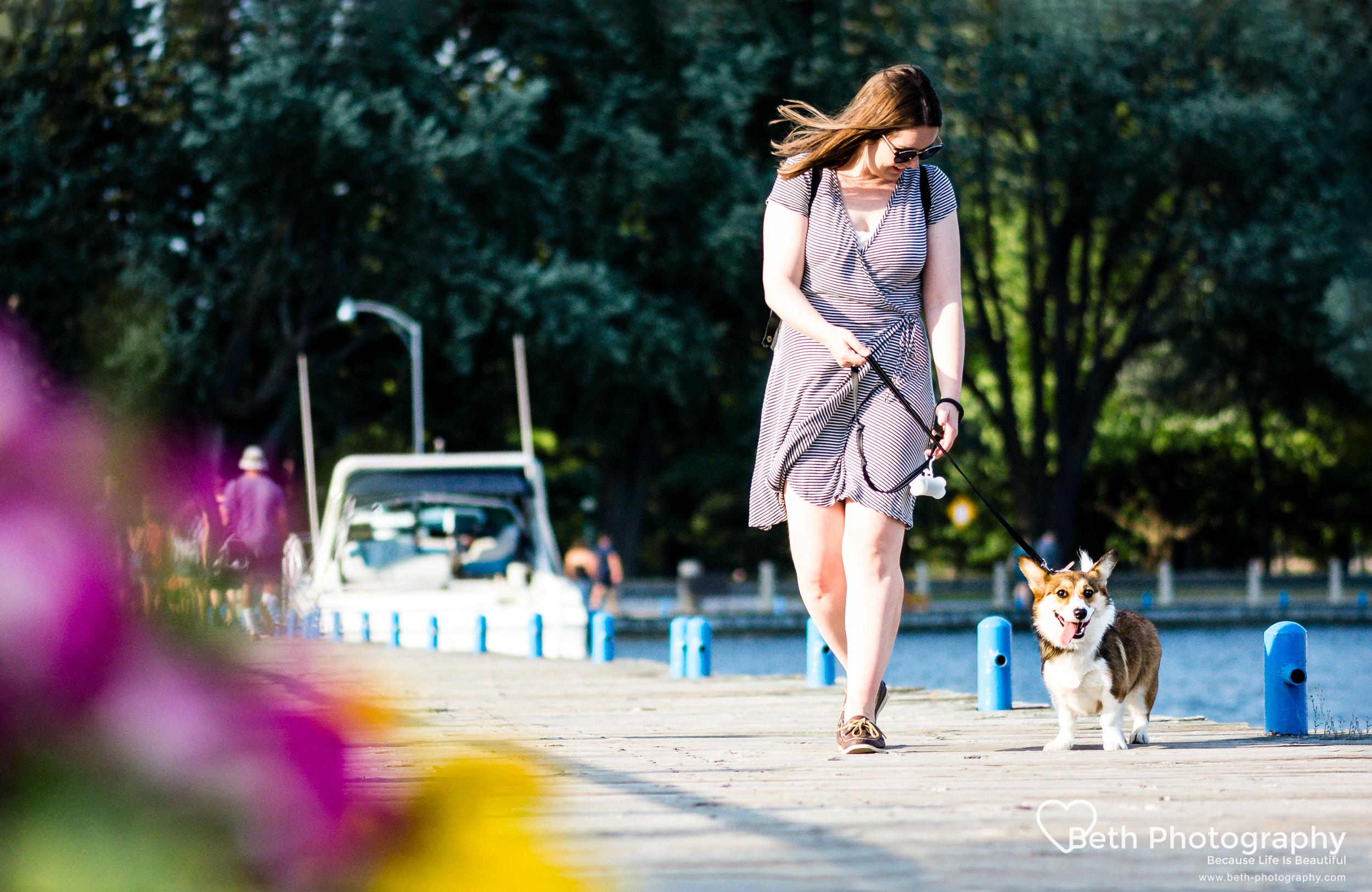 Beth Photography - Pet Photographer -Servicing Ottawa to Cornwall-4.jpg
