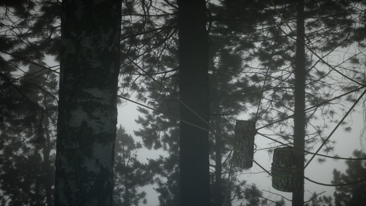 hanging log and rope 7.jpg