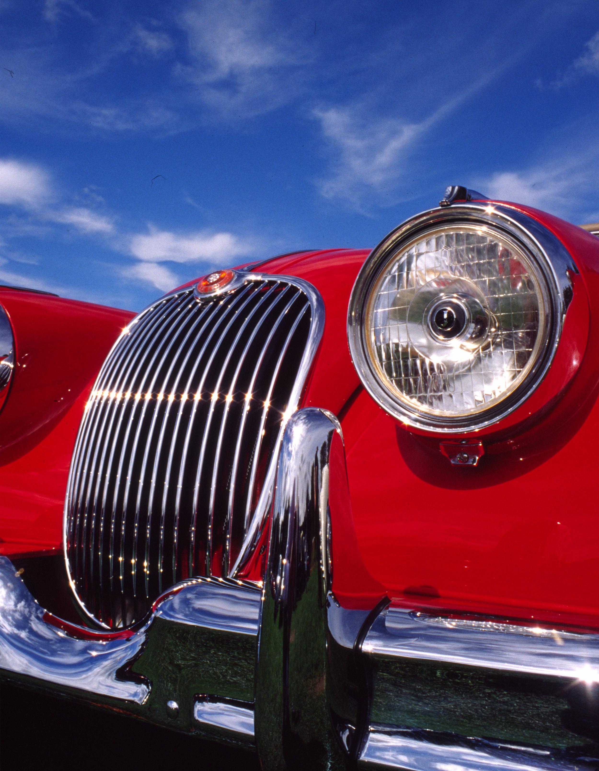 Red Jaguar.jpg