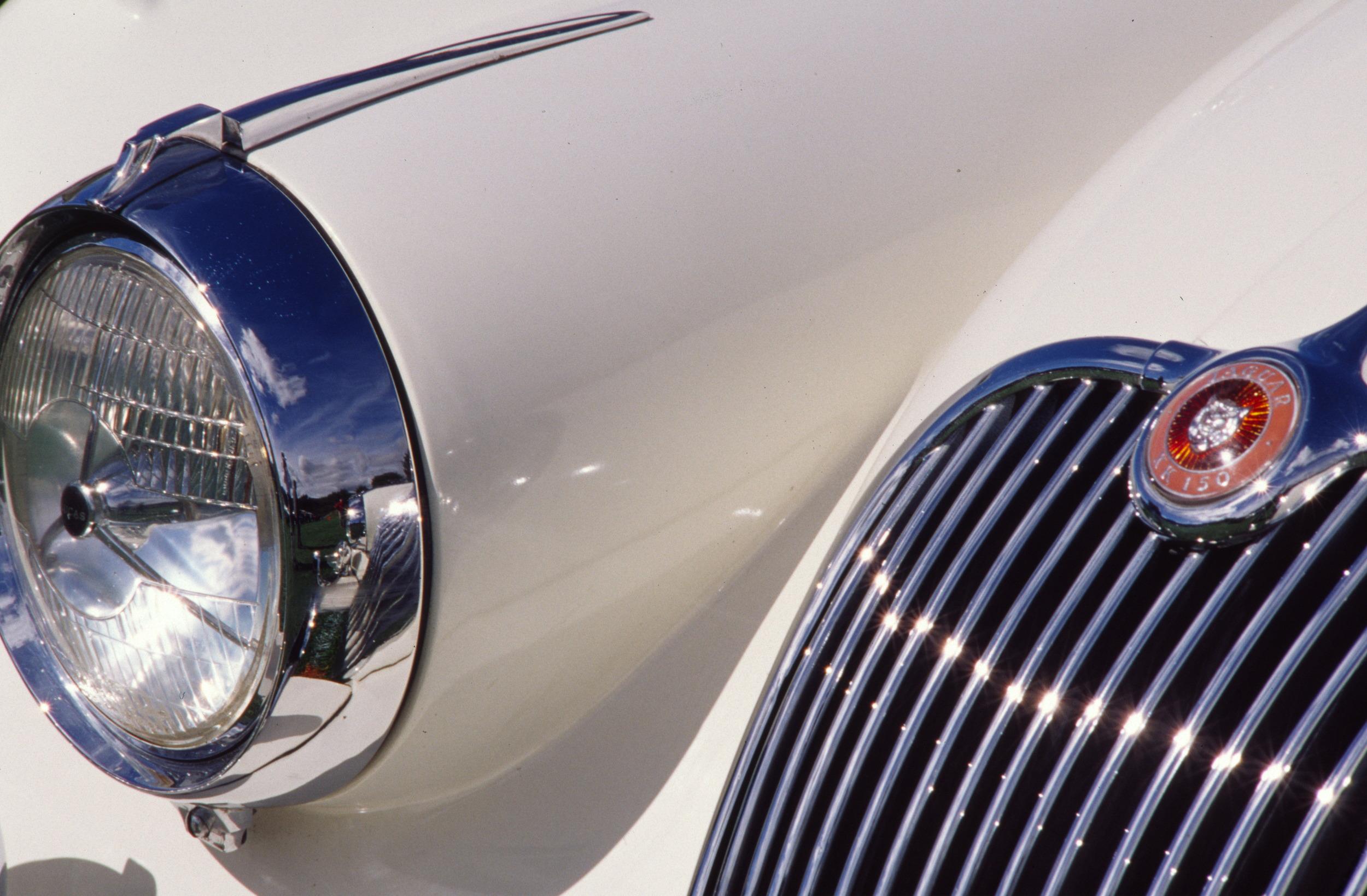 white Jaguar.jpg