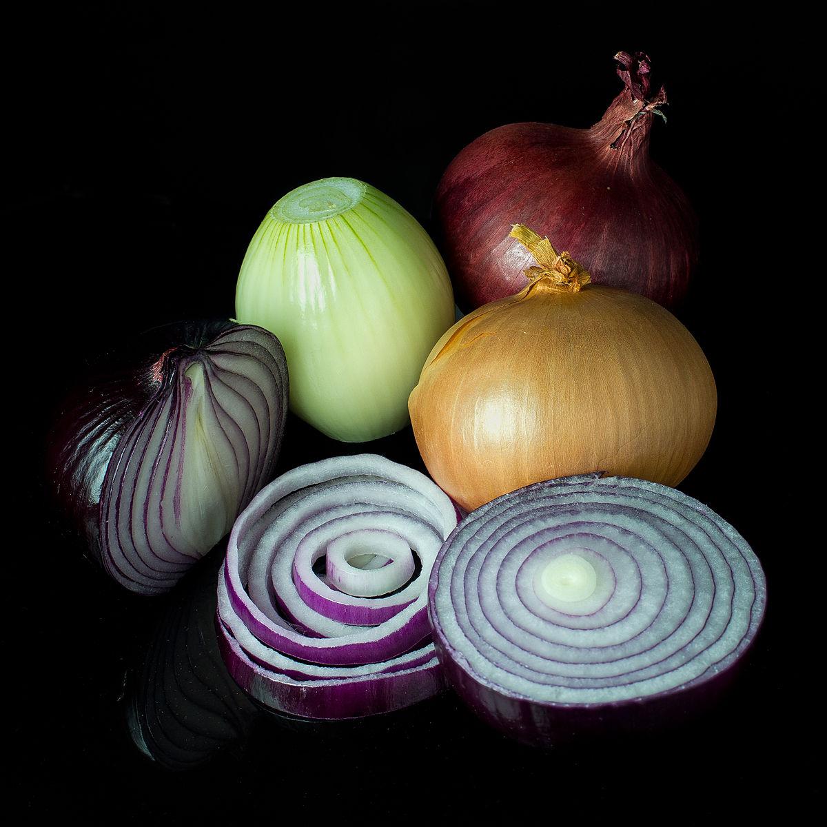 onion+Wikipedia.jpg