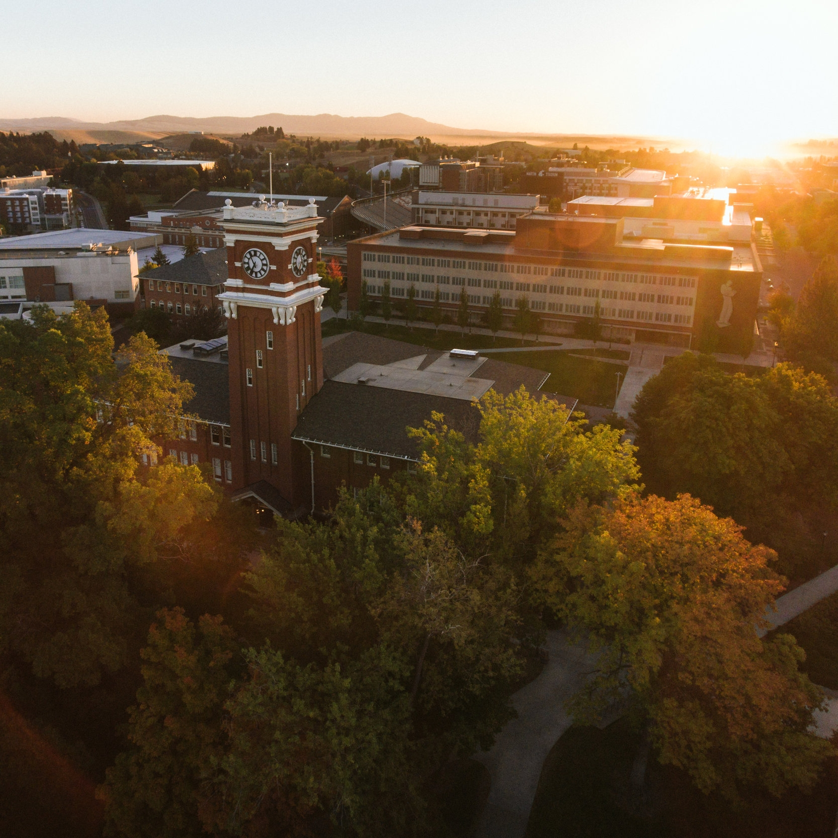 PULLMAN - WASHINGTON STATE UNIVERSITY