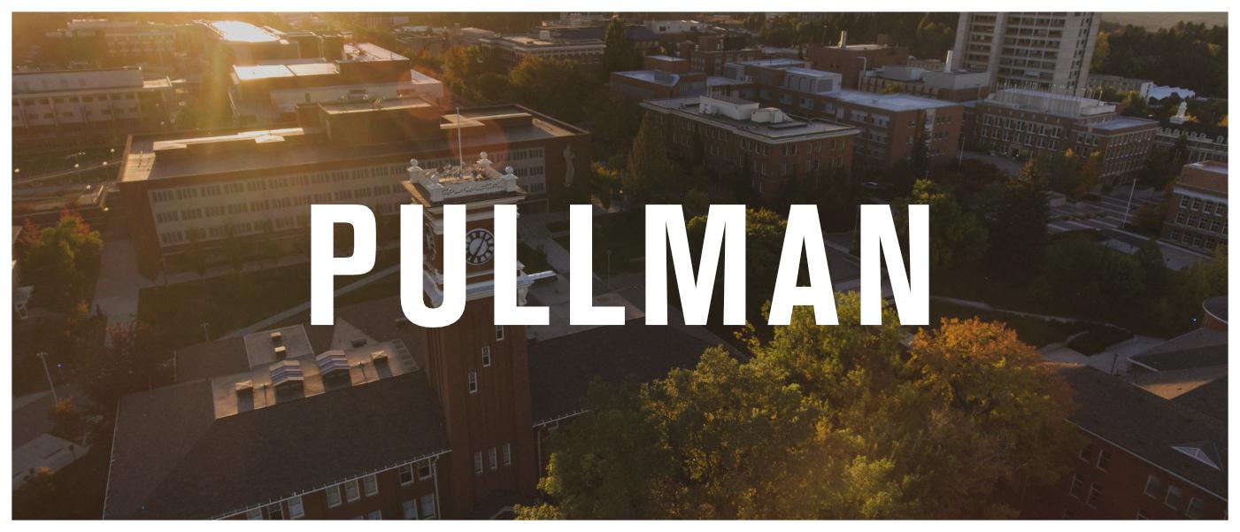 Pullman Picture.jpg
