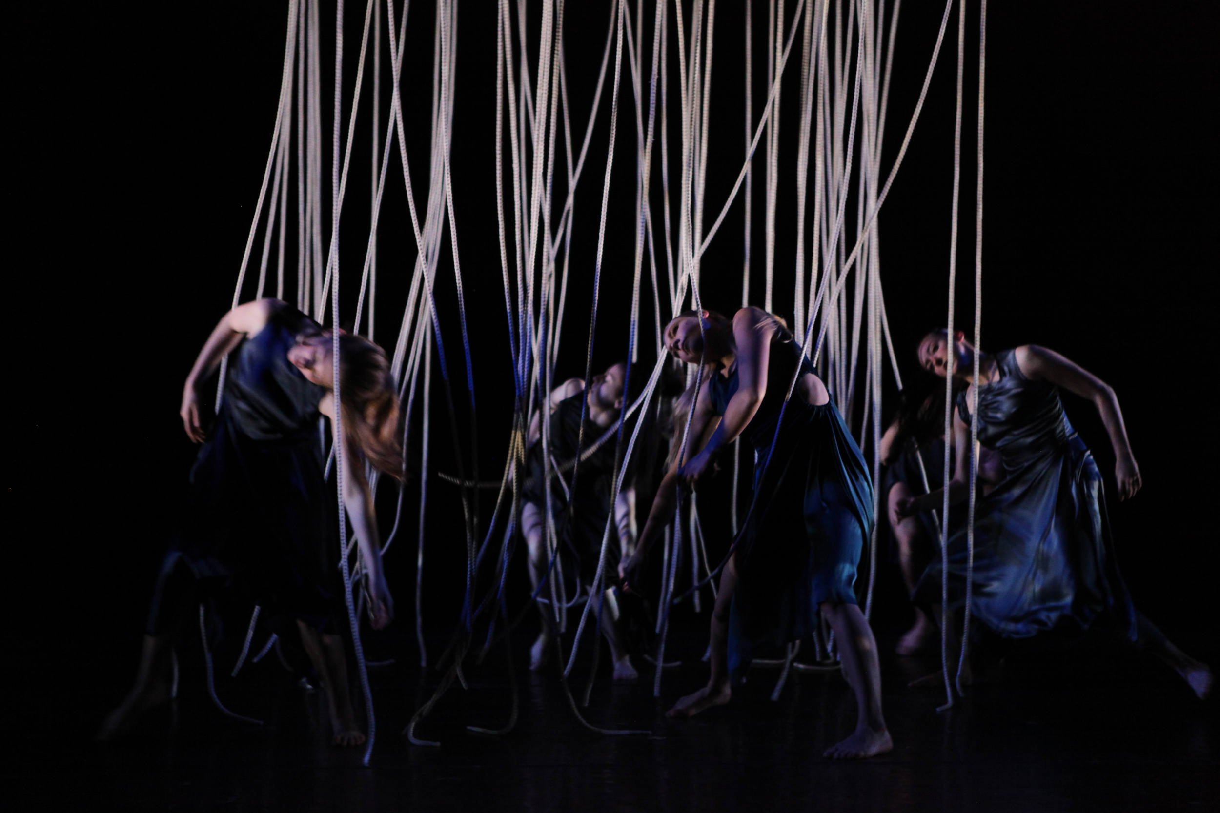 Divergent Strands, cc+d 2013, photo by Ella Bromblin  (22).jpg