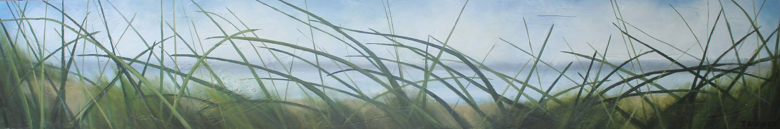 Seagrass #20