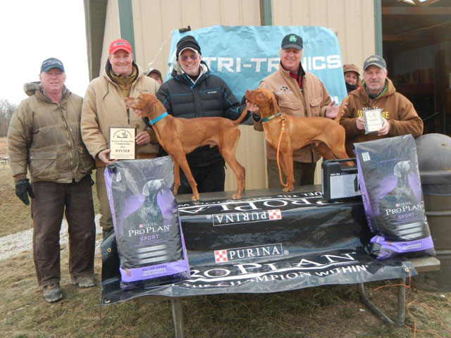 Shooting Dog  Winner: Tommy By Tommy (Tommy), Owner: Nancy Colwell, Handler: Brian Gingrich Runner up: Saginaw Redneck Cowboy (Tex), Owner and handler: Mark Johnson