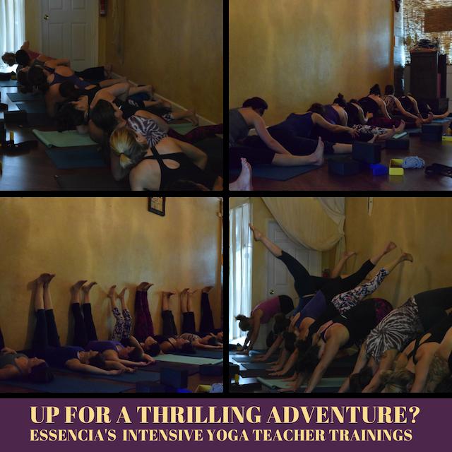 yoga teacher training intensive