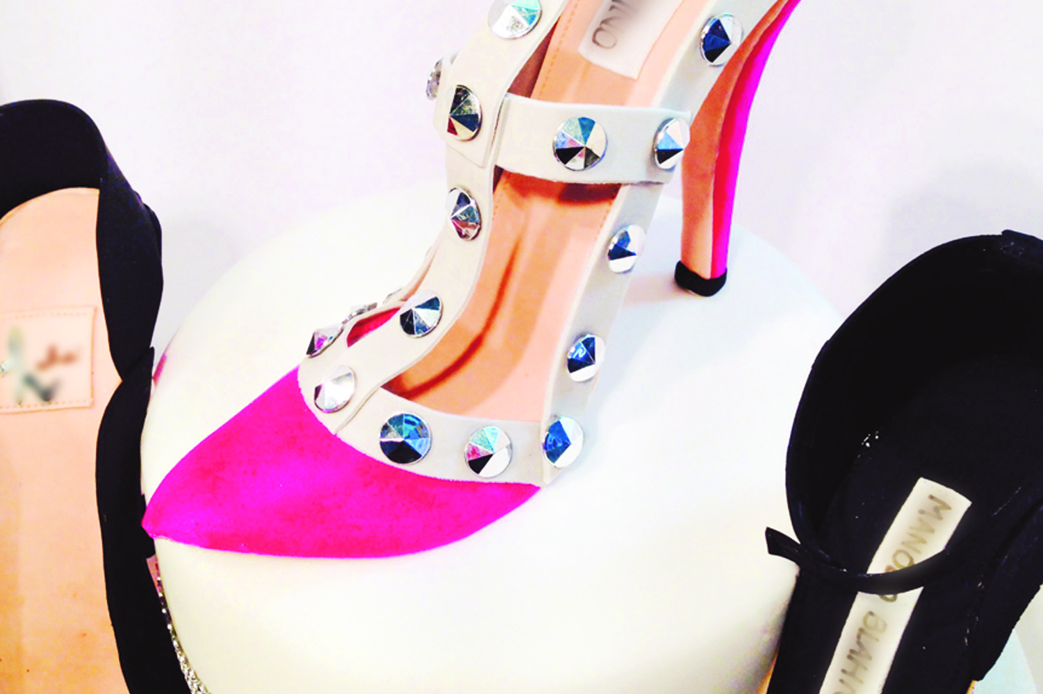 cakes-by-rachel-rachel-shoe-fashion-icing-cake.jpg