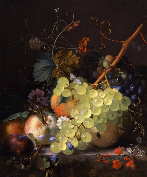 By Jan van Huysum - Public Domain, https://commons.wikimedia.org