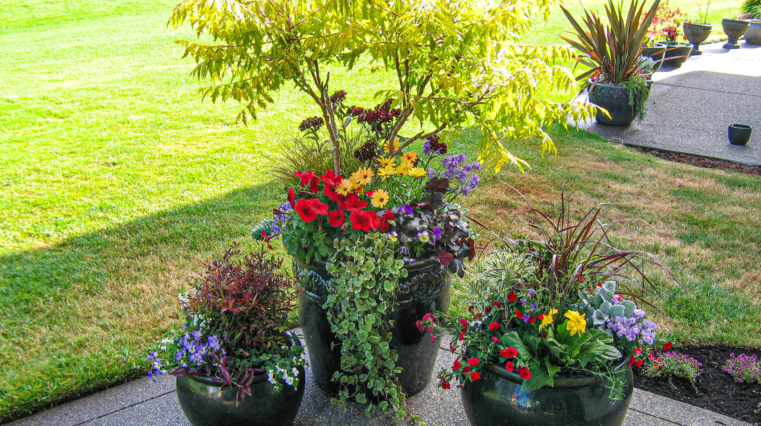 Containers & Baskets -