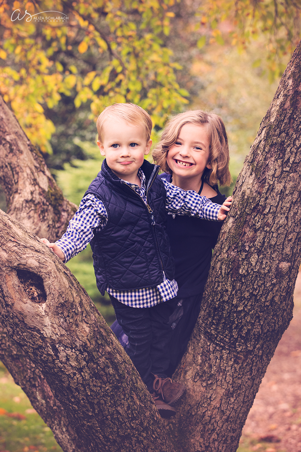 Photo of a little girl and her toddler brother in a tree