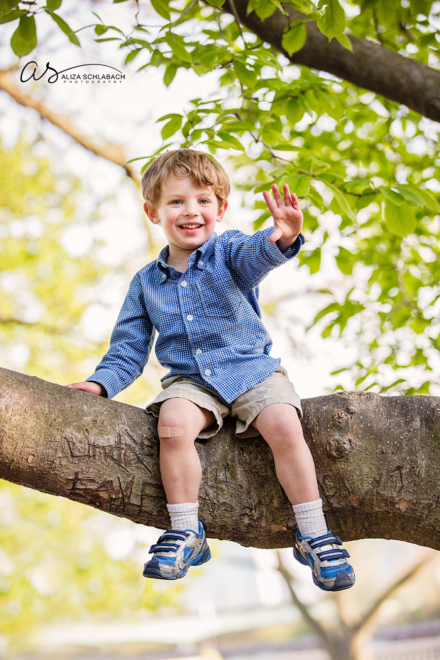3 year old boy in a tree