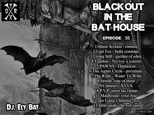 blackout in the bat house 38_preview.jpeg