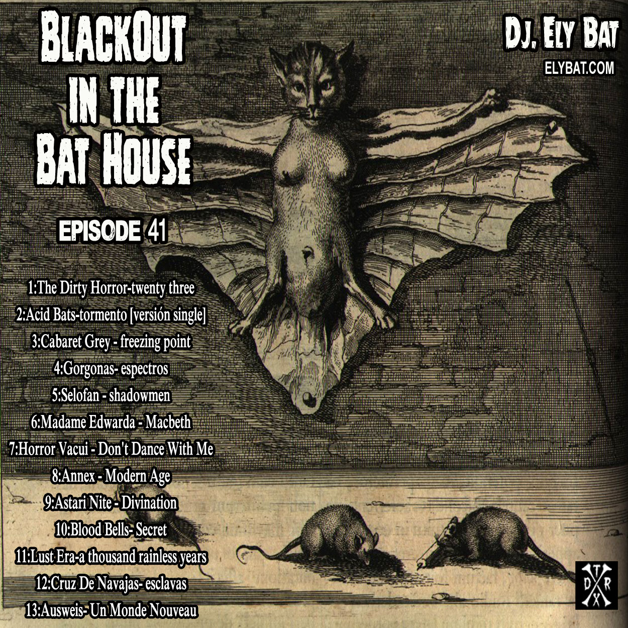 blackout in the bat house 41.jpg