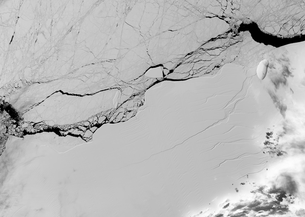 Satellite image of a long crack in the Larsen C ice shelf, taken on March 8 2017, by the Operational Land Imager on the NASA/USGS Landsat 8 spacecraft.  Source: NASA/USGS Landsat