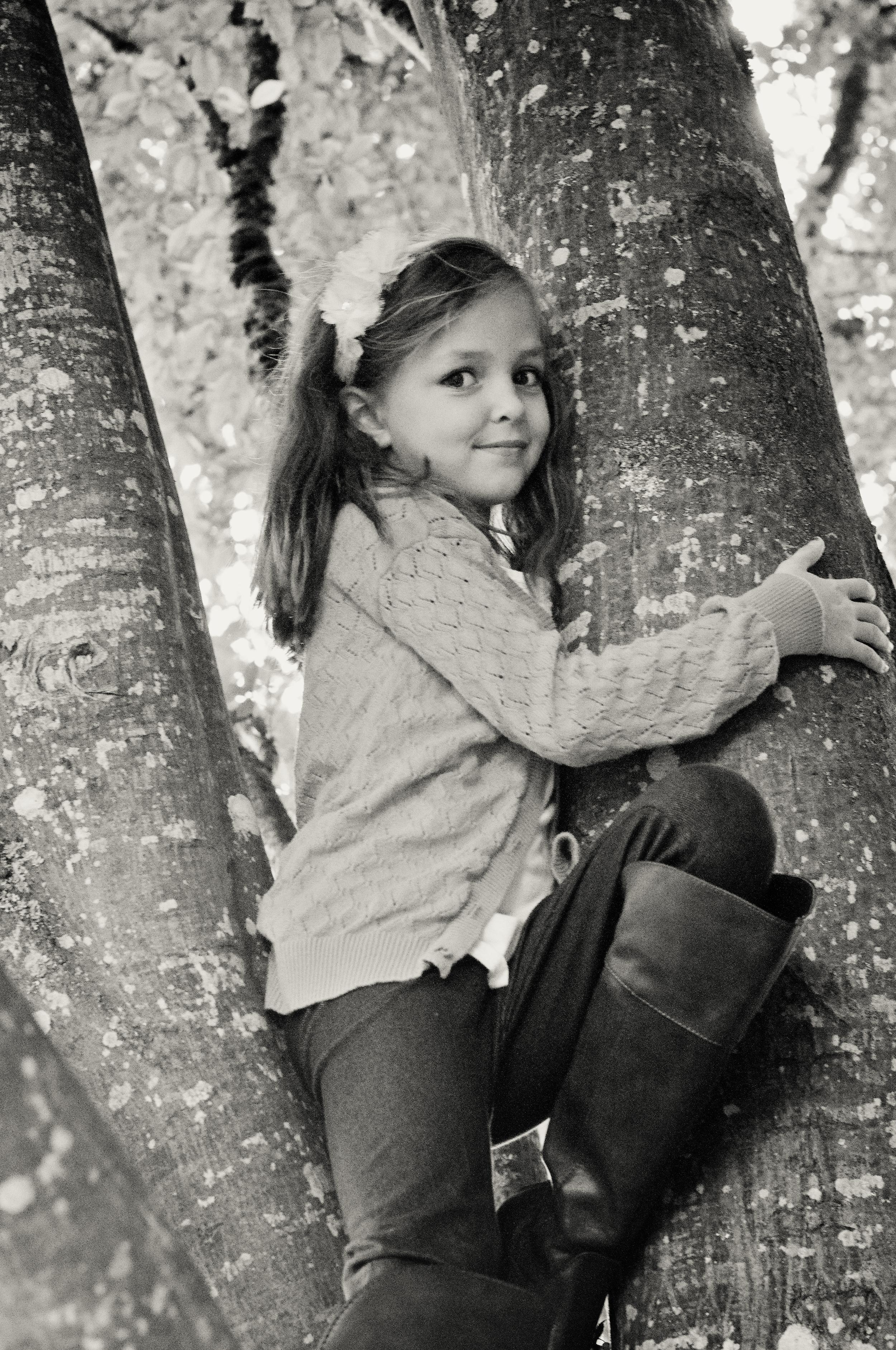 McBride Family-Avery Tree Platinum.jpg