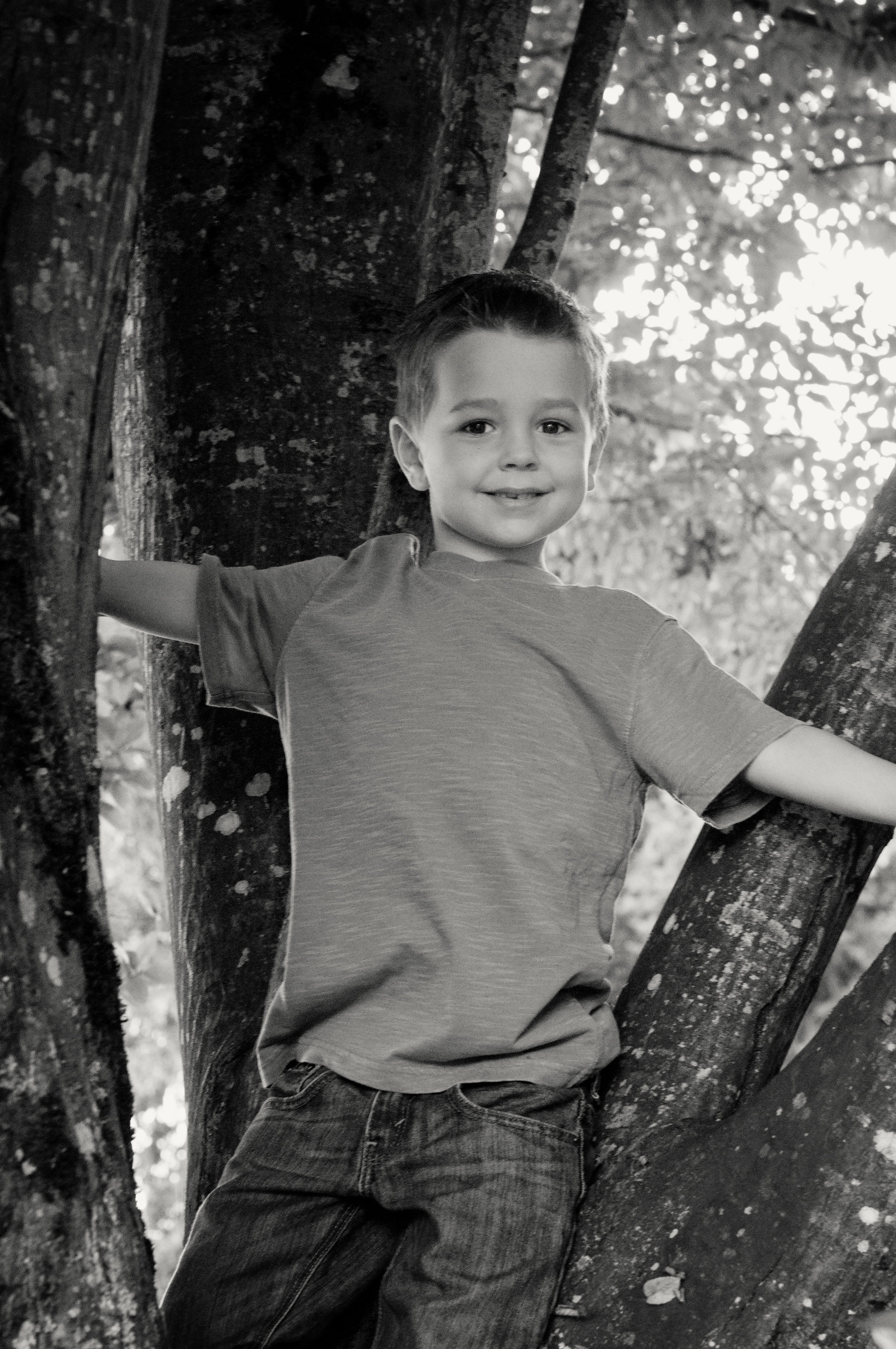McBride Family-Truman Tree Platinum.jpg